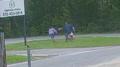 USA: 11-latka odparła atak 30-letniego nożownika. Próbował ją porwać