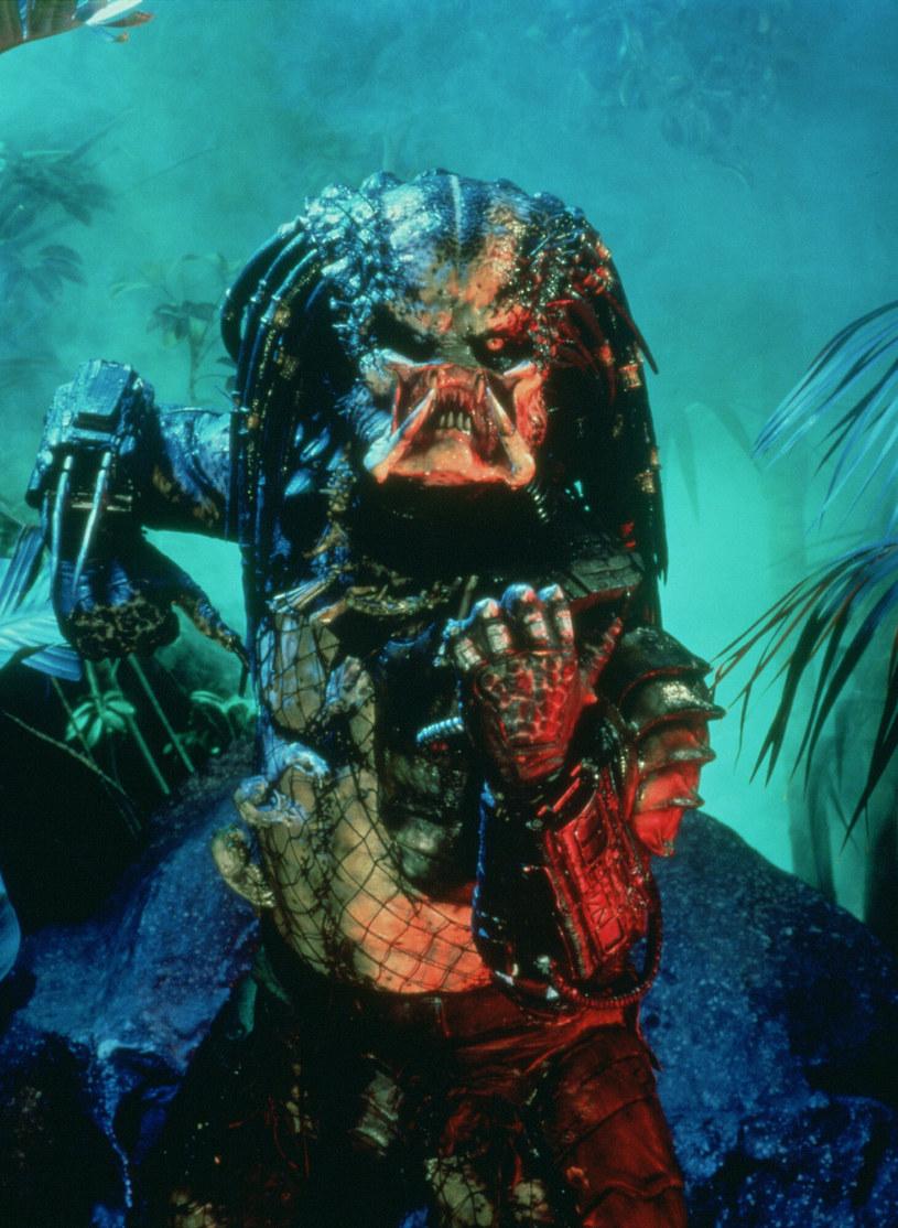Wraz z przejęciem studia 20th Century Fox, studio Disneya przejęło prawa do należących do niego franczyz. Wśród nich do popularnej serii, której bohaterem jest krwiożercze monstrum z kosmosu, Predator. O tym, jak może wyglądać film o Predatorze zrobiony przez fachowców Disney Studios, będzie można przekonać się już niedługo. Trwają bowiem prace nad kolejnym filmem z tej kultowej serii.