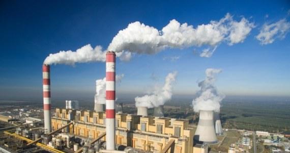 Zakończyły się prace porządkowe na miejscu pożaru w Elektrowni Bełchatów – dowiedziała się dziennikarka RMF FM Agnieszka Wyderka. W sobotę palił się tam taśmociąg, podający węgiel do największego bloku energetycznego zakładu. Częściowo spalił się także budynek zasobnika na węgiel.