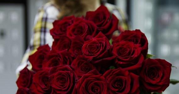 26 maja obchodzimy Dzień Matki. To dzień, w którym wyrażamy mamie swój szacunek i dziękujemy na trud naszego wychowania. Warto go uczcić i sprawić, by nasze mamy zapamiętały ten dzień na długo.