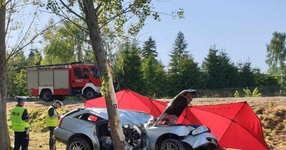 7-latek walczy w szpitalu o życie po tragicznym wypadku. W Typinie (Lubelskie) samochód uderzył drzewo. Kierowcy pojazdu nie udało się uratować. W samochodzie było troje pasażerów: kobieta i dwójka dzieci – wszyscy zostali przetransportowani do szpitala.