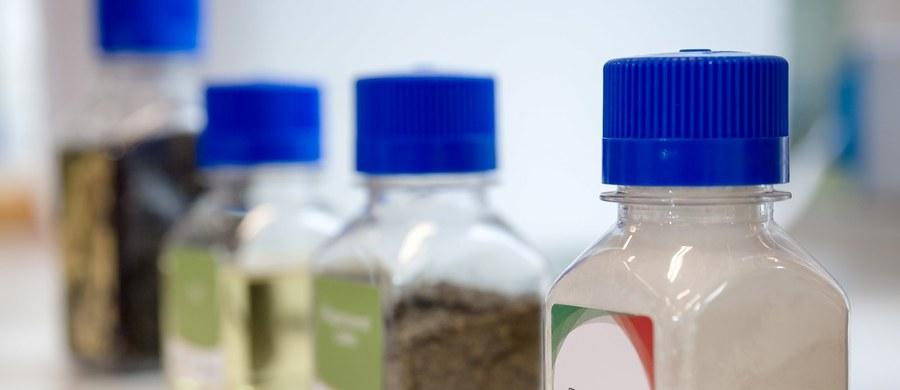 Białko z rzepaku ma szansę zrewolucjonizować rynek spożywczy i naszą dietę. Dzieje się tak za sprawą właściwości i dostępności rzepaku. Produkcją takiego białka będzie zajmować się firma NapiFeryn BioTech, która właśnie otwiera nowe laboratorium w Bionanoparku w Łodzi.