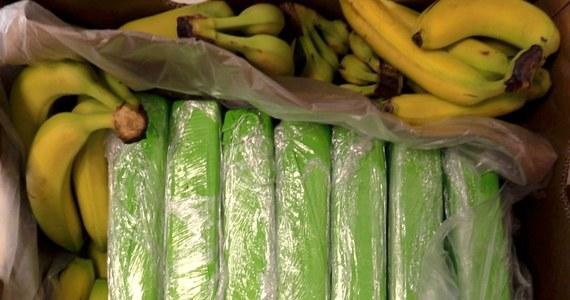 Kokaina w bananach popularnej sieci. Część trafiła już do sklepów - RMF 24