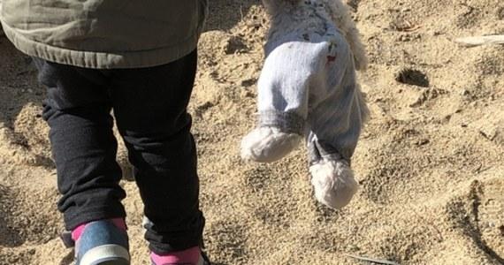 """""""Z ranami twarzy i ręki trafiła do szpitala trzyletnia dziewczynka, która została pogryziona przez 11-miesięcznego psa rasy amstaff w Nowogrodzie Bobrzańskim w pow. zielonogórskim"""" – poinformowała Małgorzata Barska z Komendy Miejskiej Policji w Zielonej Górze."""