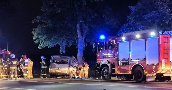 """Ośmioosobowa rodzina została ranna w wypadku koło Budzynia na krajowej """"jedenastce"""" w Wielkopolsce. Jak informuje GDDKiA, w miejscowości Budzyń bus uderzył w drzewo. Wśród poszkodowanych są dzieci w wieku od 3 miesięcy do 12 lat."""
