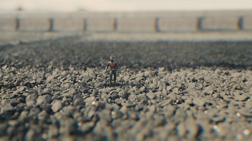 """Komiksowa superprodukcja Marvela """"Ant-Man"""" to widowiskowa opowieść o złodzieju, który dzięki specjalnemu skafandrowi zmienia się w herosa zdolnego ocalić ludzkość przed katastrofą. Film z tytułową rolą Paula Rudda można było zobaczyć w Polsacie w poniedziałek. Produkcja znajdzie się także w najbliższych dniach w ofercie Polsat Film (22 sierpnia o godz. 21)."""