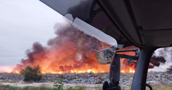 Pożar nielegalnego składowiska odpadów w miejscowości Sobolew niedaleko Jawora na Dolnym Śląsku. Pożar nie jest opanowany. Na miejscu kilkanaście zastępów straży walczy z ogniem.
