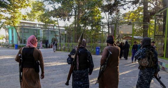 W sobotnich zamachach w Dżalalabadzie rannych zostało 19 osób - poinformował AFP pragnący zachować anonimowość przedstawiciel talibów. To pierwsze ataki, do których doszło w Afganistanie po przejęciu władzy przez talibów w kraju.