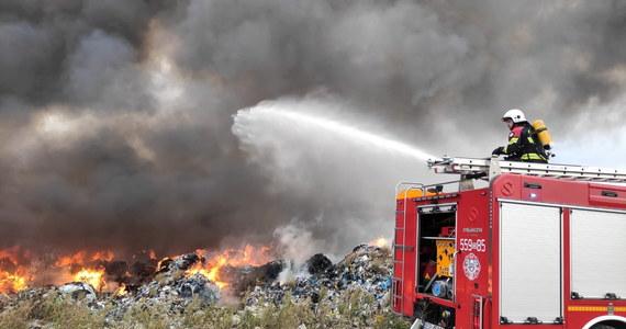 Strażacy znów walczą z ugaszonym wczoraj wieczorem pożarem nielegalnego składowiska odpadów w Sobolewie koło Jawora na Dolnym Śląsku. Ogień pojawił się tam w sobotę rano. Zapaliły się sprasowane śmieci, przewiezione tam z Niemiec i Anglii.