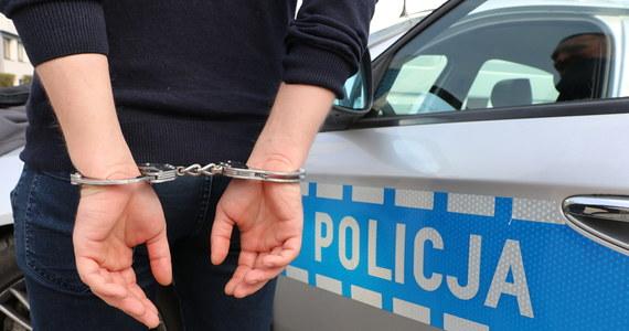 Policja zatrzymała mężczyznę podejrzanego o kradzieże paczek w sortowni kurierskiej, w której pracował. Okazało się, że był też poszukiwany listem gończym, a w jego mieszkaniu znaleziono  krzaki konopi.