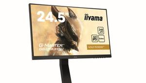 iiyama G-Master GB2590HSU-B1 Gold Phoenix - monitor dla esportowców