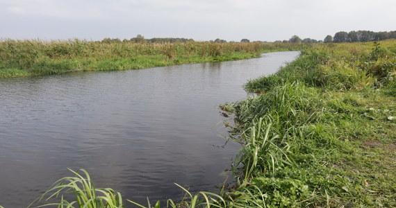Tragedia w Pułtusku. Z rzeki Narew wyłowiono ciało małej dziewczynki. Kilka kilometrów dalej w rzece znaleziono również ciało jej matki. Sprawą zajmuje się policja pod nadzorem pułtuskiej prokuratury.