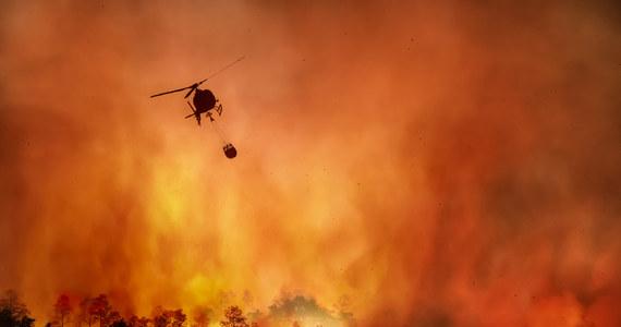 Ogromny pożar wybuchł wczoraj na jednej z karaibskich wysp Guanaja, około 70 kilometrów od północnego wybrzeża Hondurasu. Z powodu trudnej akcji gaśniczej i zagrożenia życia konieczna była ewakuacja mieszkańców - podał Reuters.
