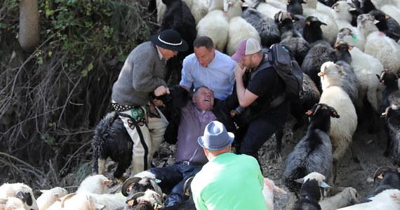 Do poważnego incydentu doszło podczas redyku w Jamnem w powiecie nowotarskim. Spłoszone owce stratowały mężczyznę, który przyglądał się spędowi. Na szczęście, nic poważnego mu się nie stało.