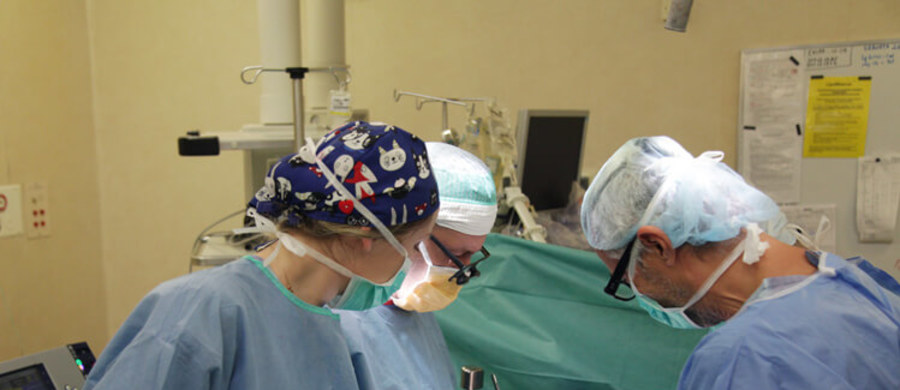 Pierwszy taki zabieg w Polsce i unikatowy w świecie. Lekarze w  Katedrze i Klinice Chirurgii Ogólnej i Transplantacyjnej UCK WUM jednocześnie przeszczepili wątrobę i trzustkę u młodej kobiety chorej na mukowiscydozę. Dotychczas zaledwie kilka ośrodków transplantacyjnych m.in. Wielkiej Brytanii, USA i Hiszpanii zgłaszało jednoczesne przeszczepienie wątroby i trzustki chorych z mukowiscydozą. Zabieg u 21-letniej pacjentki jest ogromnym sukcesem polskich specjalistów ze Szpitala Klinicznego Dzieciątka Jezus.