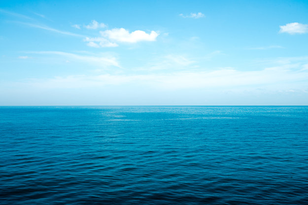 Cząstki farb w oceanach. Są zjadane przez morskie organizmy