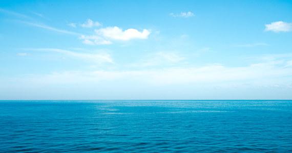 Cząstki farb to jeden z najczęściej występujących mikroplastików w oceanach. Prawdopodobnie przypadkowo zjadają je różne morskie organizmy, choć nie wiadomo jeszcze z jakim skutkiem.