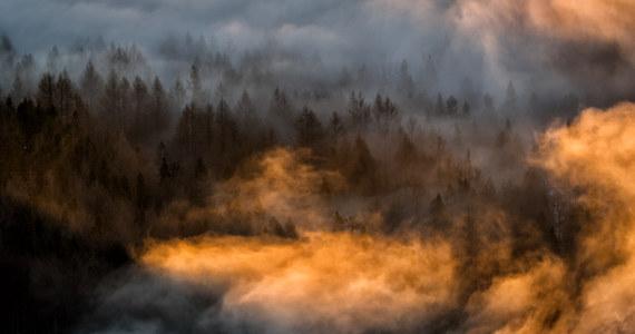 W Bieszczadach termometry rano pokazywały od dwóch stopni mrozu w Ustrzykach Górnych do dwóch stopni Celsjusza powyżej zera w Cisnej. Niektóre szlaki górskie nadal są śliskie.
