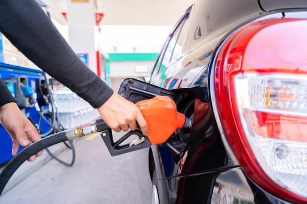 """""""6 złotych za litr paliwa to dopiero początek"""". Kierowco, płać i płacz"""