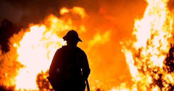 Pożar Alisal szalejący w pobliżu Santa Barbara w Kalifornii rozszerzył wczoraj swój zasięg i ogarnia już powierzchnię blisko 3240 hektarów. Władze wydały ostrzeżenia dla ludności, a w niektórych miejscach także nakazy ewakuacji.