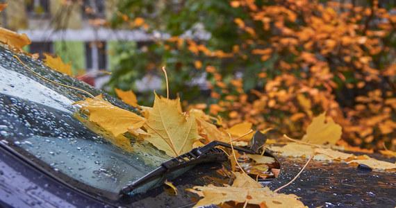"""""""Od zachodu na wschód przesuwać się będzie front atmosferyczny z towarzyszącymi opadami deszczu"""" - powiedział Szymon Ogórek, synoptyk Instytutu Meteorologii i Gospodarki Wodnej. W ciągu dnia temperatura wyniesie od 9 do 13 stopni Celsjusza."""