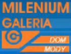 Galeria Milenium-Wielgie