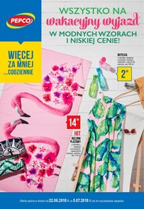 Gazetka promocyjna Pepco, ważna od 22.06.2018 do 05.07.2018.