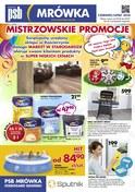 Gazetka promocyjna PSB Mrówka - Mistrzowskie promocje  - ważna do 05-07-2018