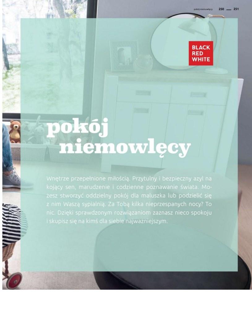Gazetka: Katalog rodzinnych wnętrz  - strona 251
