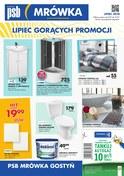 Gazetka promocyjna PSB Mrówka - Lipiec gorących promocji - Gostyń - ważna do 21-07-2018