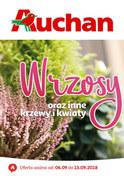 Gazetka promocyjna Auchan - Wrzosy - ważna do 13-09-2018