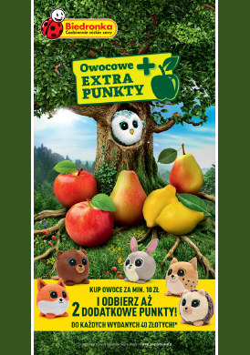 Gazetka promocyjna Biedronka - Owocowe extra punkty