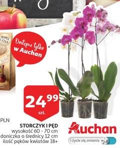 Gazetka promocyjna Auchan, ważna od 08.10.2018 do 15.10.2018.