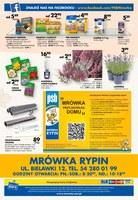 Gazetka promocyjna PSB Mrówka - Wrzesień złotych promocji - Rypin