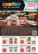 Gazetka promocyjna Kakadu - Pupil sam w domu  - ważna do 31-12-2018