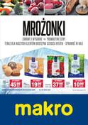 Gazetka promocyjna Makro Cash&Carry - Mrożonki  - ważna do 28-01-2019