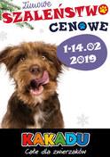 Gazetka promocyjna Kakadu - Zimowe szaleństwo cenowe - ważna do 14-02-2019