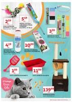 Gazetka promocyjna Auchan - Przestrzeń pupila