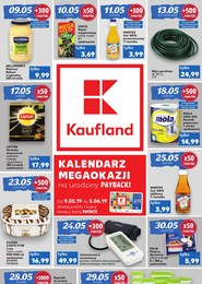Gazetka promocyjna Kaufland, ważna od 09.05.2019 do 06.06.2019.