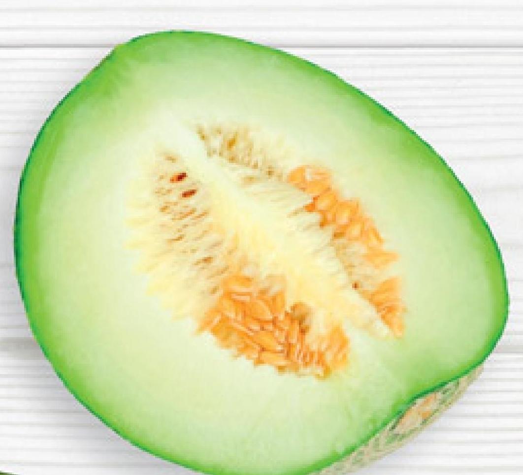 Melon zielony niska cena