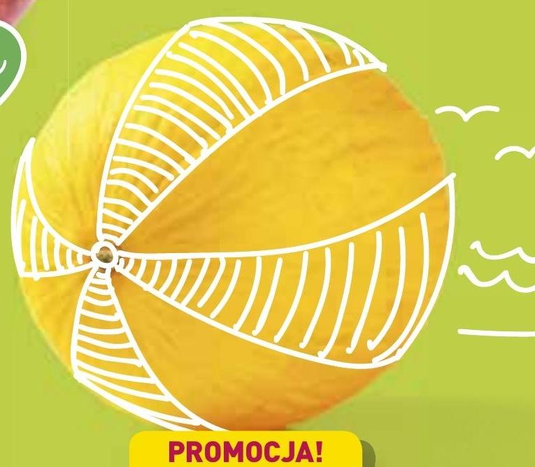 Melon miodowy niska cena