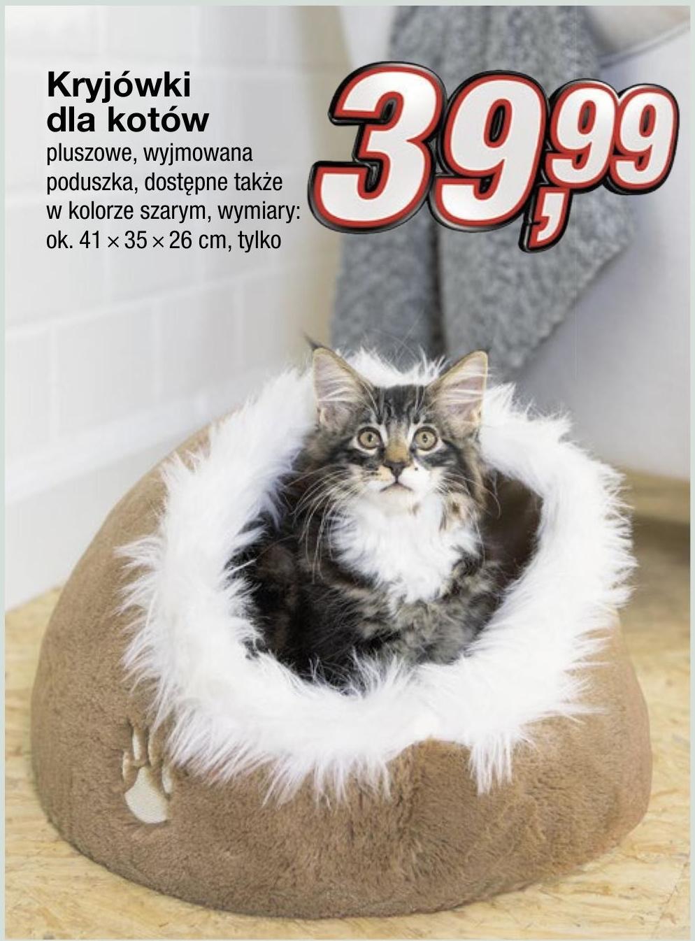 Legowisko dla kota  niska cena