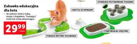 Zabawka edukacyjna dla kota