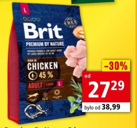 Sucha karma dla psa Brit