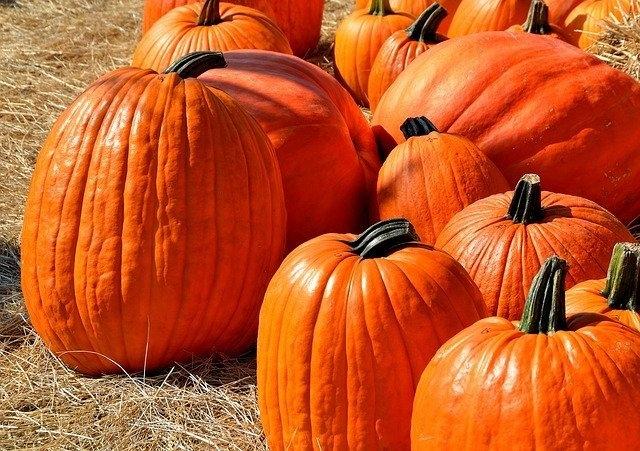 Promocje Halloween