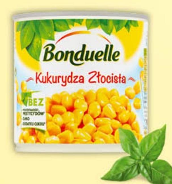 Kukurydza konserwowa Bonduelle niska cena