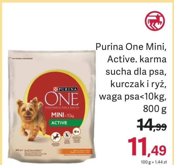 Karma dla psa Purina One niska cena