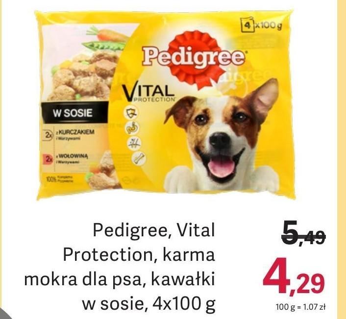 Karma dla psa Pedigree niska cena