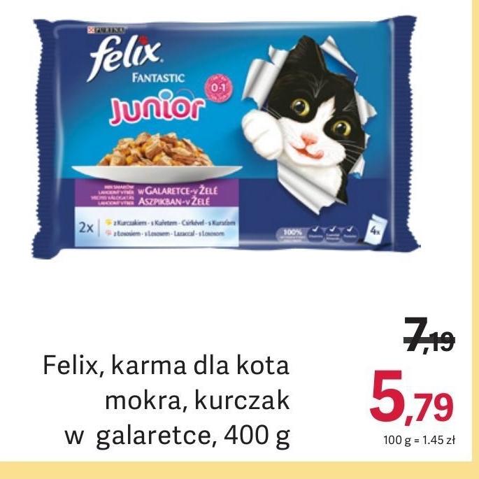 Karma dla kota Felix niska cena