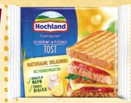 Ser topiony Hochland